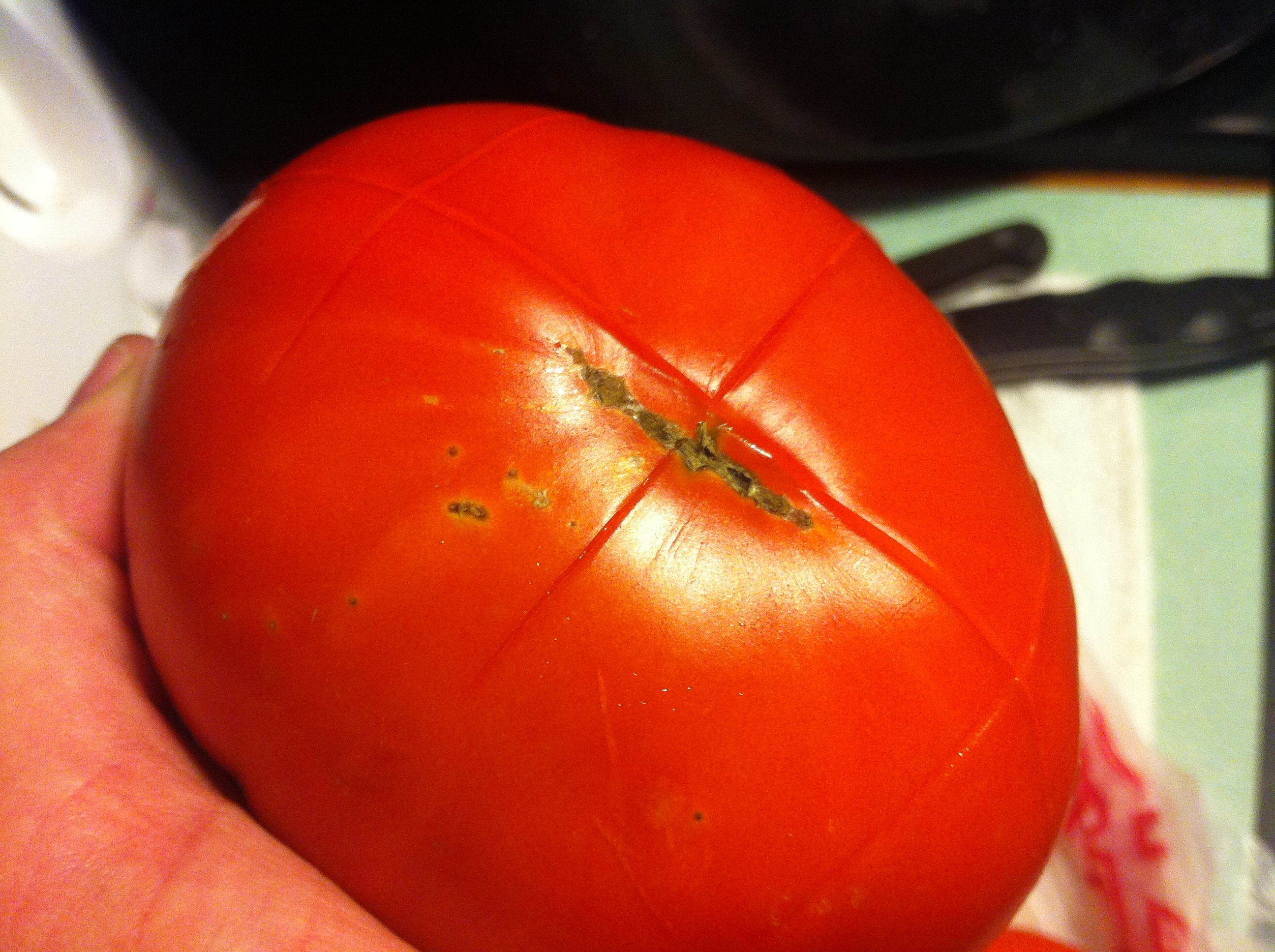 Trick for blanching tomatoes