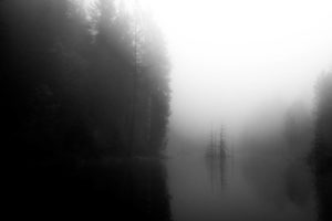 Fog 1 - brandon mauth