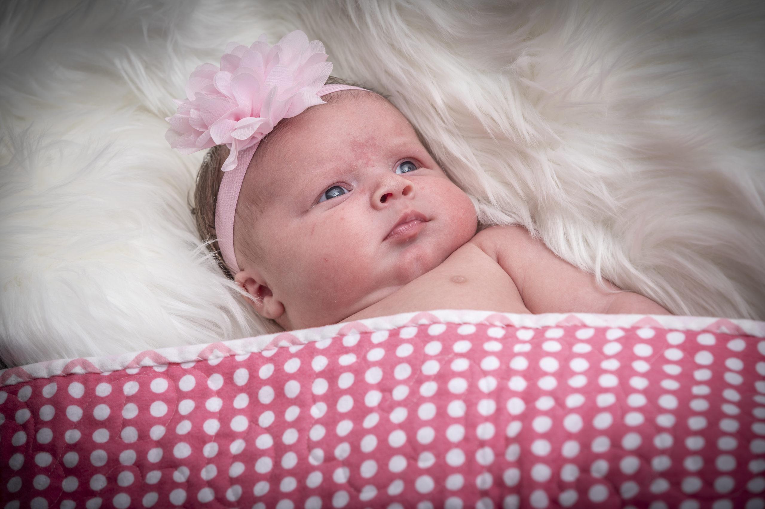 Baby EmilieLynne